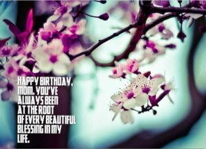 Happy Birthday Mom message, quote, blessing image
