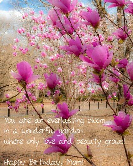 Happy Birthday Mom Poetry