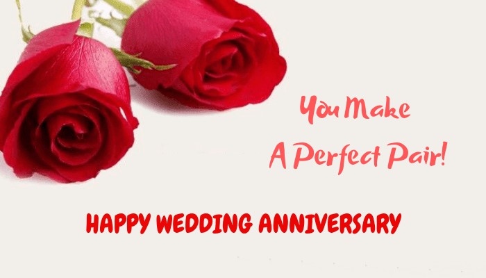 Happy Anniversary Wishes for Friend Perfect